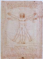Belt Leaf Vitruvius Man