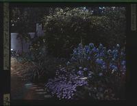 Smith - Flower Walk Detail